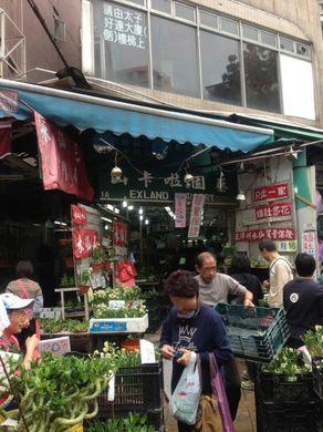 050213_flower7-thumbnail2.jpg
