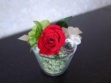 260411_pflower5.jpg
